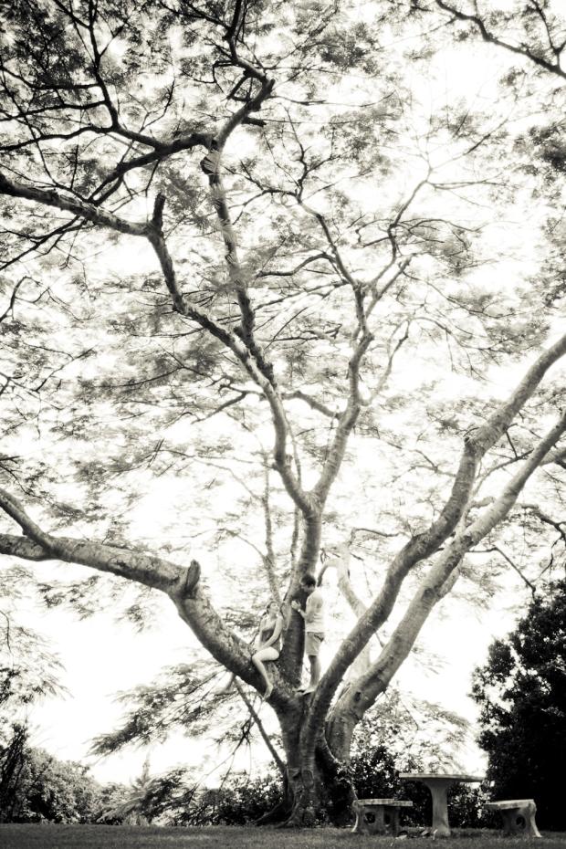 LamplightPhotography-13